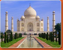 agra - the Taj mahal picture
